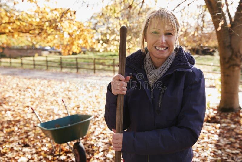 Πορτρέτο της ώριμης γυναίκας που μαζεύει με τη τσουγκράνα τα φύλλα φθινοπώρου στον κήπο στοκ εικόνα