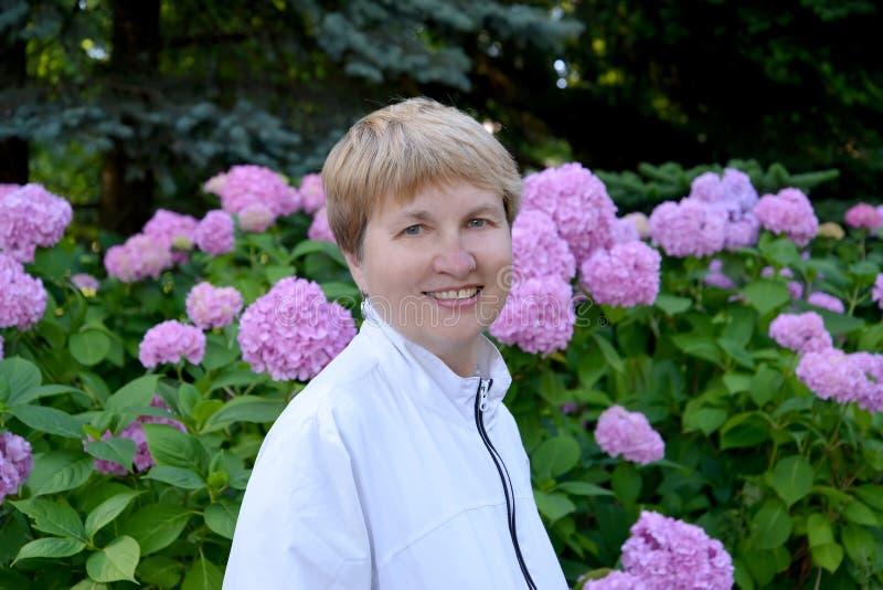 Πορτρέτο της ώριμης γυναίκας στα πλαίσια του hydrangea άνθησης στοκ φωτογραφία με δικαίωμα ελεύθερης χρήσης