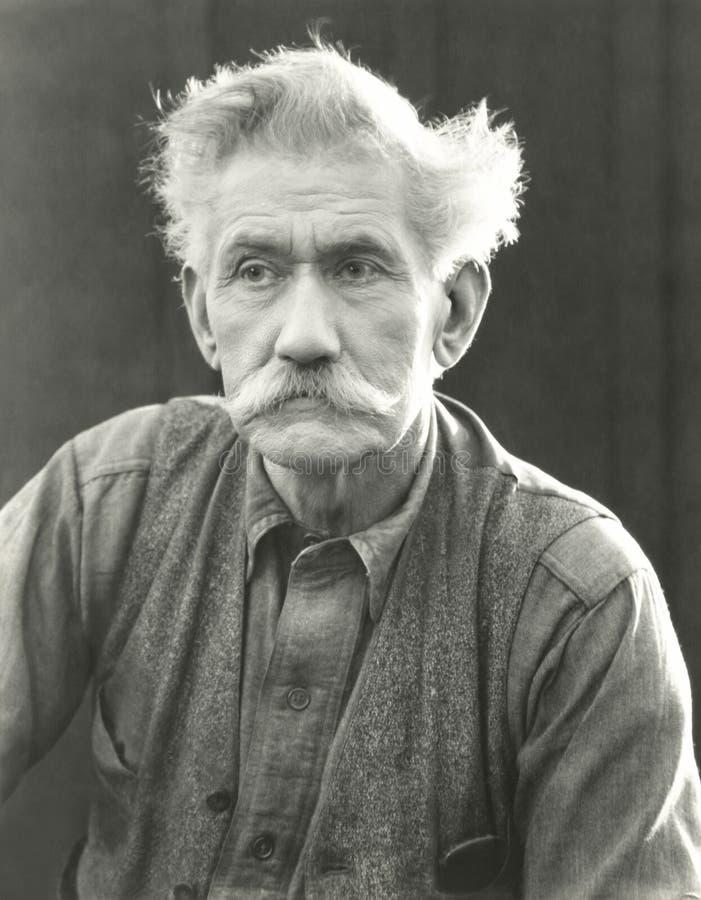 Πορτρέτο του ανώτερου ατόμου με το θαμνώδες moustache στοκ εικόνες με δικαίωμα ελεύθερης χρήσης