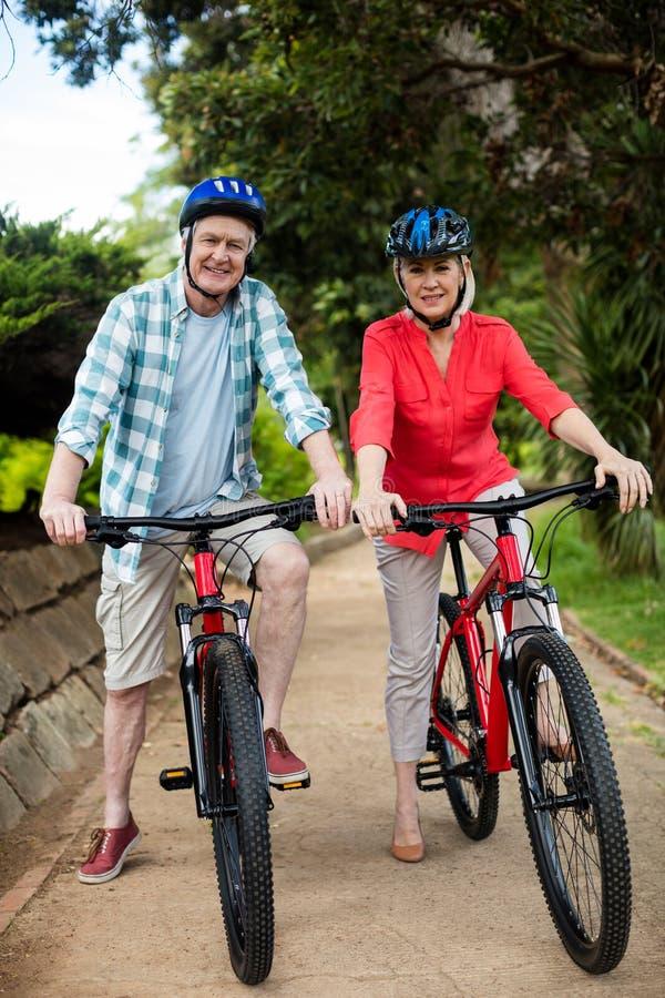 Πορτρέτο του ανώτερου ζεύγους που στέκεται με το ποδήλατο στο πάρκο στοκ φωτογραφίες με δικαίωμα ελεύθερης χρήσης