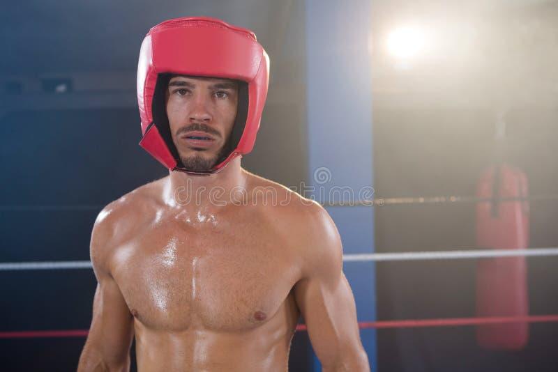 Πορτρέτο του αρσενικού μπόξερ γυμνοστήθων που φορά το κόκκινο κάλυμμα στοκ εικόνα με δικαίωμα ελεύθερης χρήσης