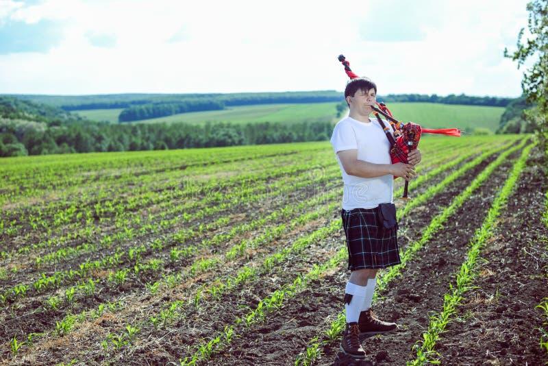 Πορτρέτο του αρσενικού που απολαμβάνει παίζοντας τους σωλήνες στην παραδοσιακή σκωτσέζικη φούστα σε πράσινο υπαίθρια στοκ φωτογραφίες με δικαίωμα ελεύθερης χρήσης