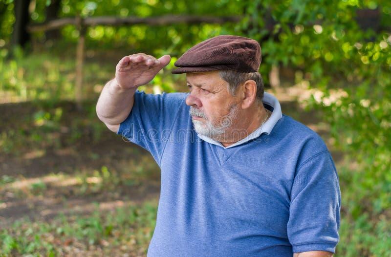 Πορτρέτο του γενειοφόρου ανώτερου ατόμου που εξετάζει την απόσταση στοκ φωτογραφία με δικαίωμα ελεύθερης χρήσης