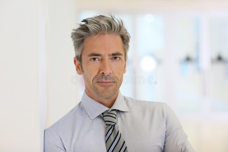 Πορτρέτο του επιτυχούς ώριμου επιχειρηματία στοκ εικόνες