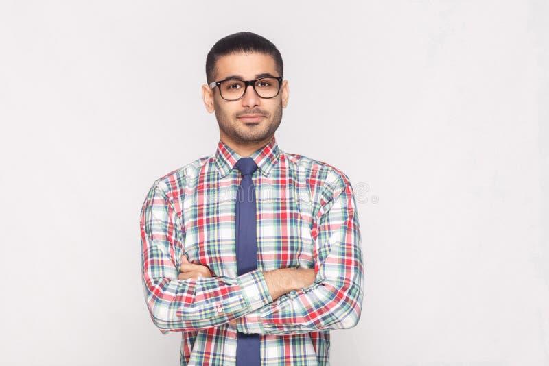 Πορτρέτο του ευτυχούς όμορφου γενειοφόρου επιχειρηματία στο ζωηρόχρωμο έλεγχο στοκ φωτογραφία με δικαίωμα ελεύθερης χρήσης