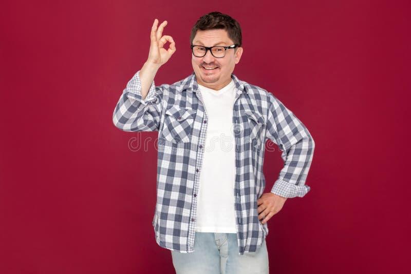 Πορτρέτο του ευτυχούς όμορφου μέσου ηλικίας επιχειρησιακού ατόμου στο περιστασιακό ελεγμένο πουκάμισο, eyeglasses που στέκεται με στοκ εικόνα με δικαίωμα ελεύθερης χρήσης