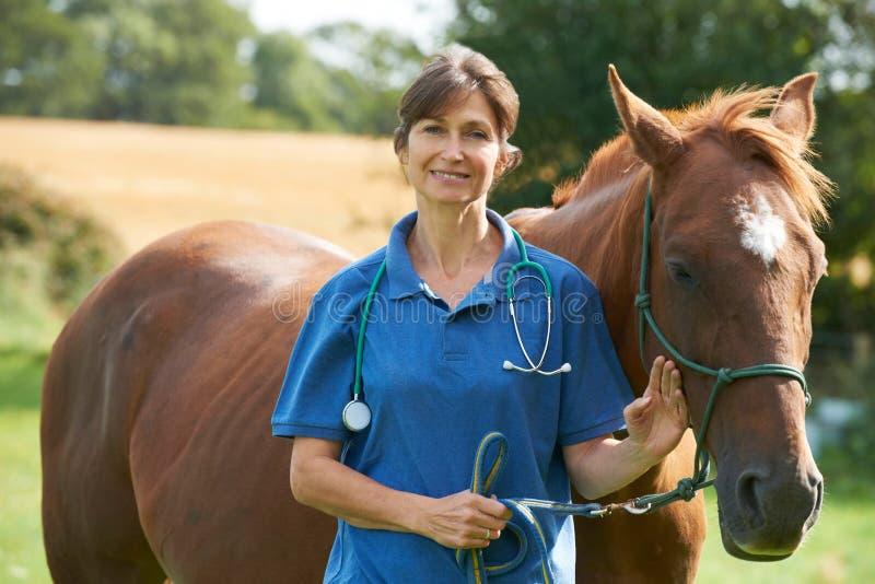 Πορτρέτο του θηλυκού κτηνιάτρου στον τομέα με το άλογο στοκ εικόνες