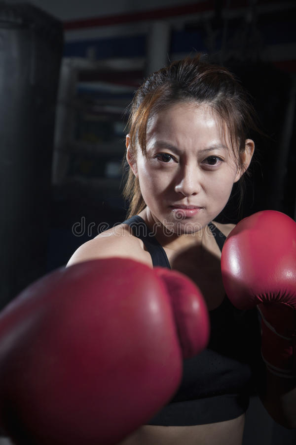 Πορτρέτο του καθορισμένου θηλυκού μπόξερ στην πάλη της θέσης που εξετάζει τη κάμερα στοκ εικόνες με δικαίωμα ελεύθερης χρήσης