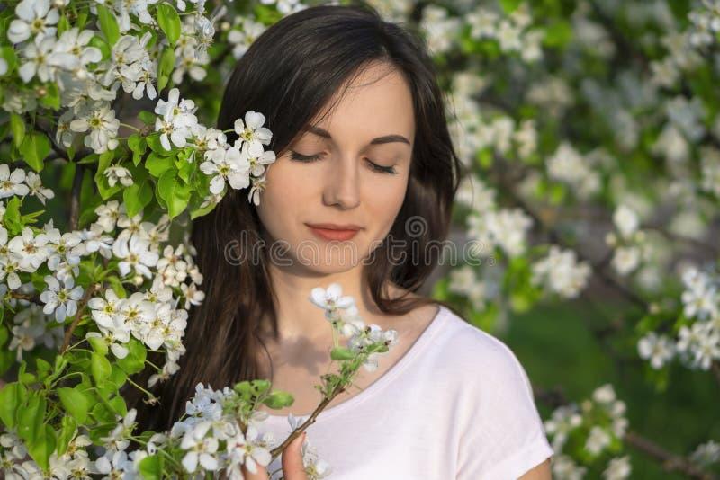 Πορτρέτο του κοριτσιού brunette στην άνοιξη Όμορφη νέα γυναίκα στα άσπρα λουλούδια που απολαμβάνει τον οπωρώνα μήλων στοκ φωτογραφία