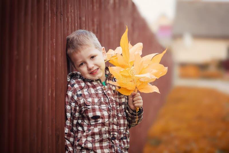 Πορτρέτο του μικρού αγοριού με τα κίτρινα φύλλα σφενδάμου στοκ φωτογραφία