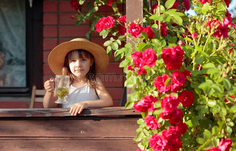 Πορτρέτο του μικρού κοριτσιού στο καπέλο αχύρου με το ποτήρι του βοτανικού τσαγιού στοκ φωτογραφία με δικαίωμα ελεύθερης χρήσης