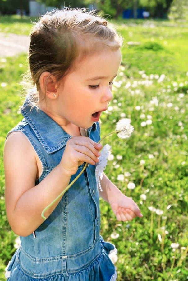 Πορτρέτο του χαριτωμένου φυσήγματος μικρών κοριτσιών στην πικραλίδα στοκ φωτογραφίες