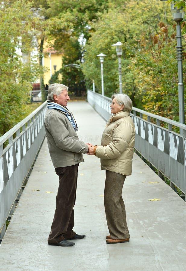 Πορτρέτο του όμορφου ευτυχούς ώριμου ζεύγους που στηρίζεται μαζί υπαίθρια στοκ εικόνες