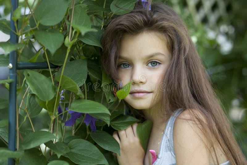 Πορτρέτο του όμορφου μικρού κοριτσιού στοκ φωτογραφίες με δικαίωμα ελεύθερης χρήσης