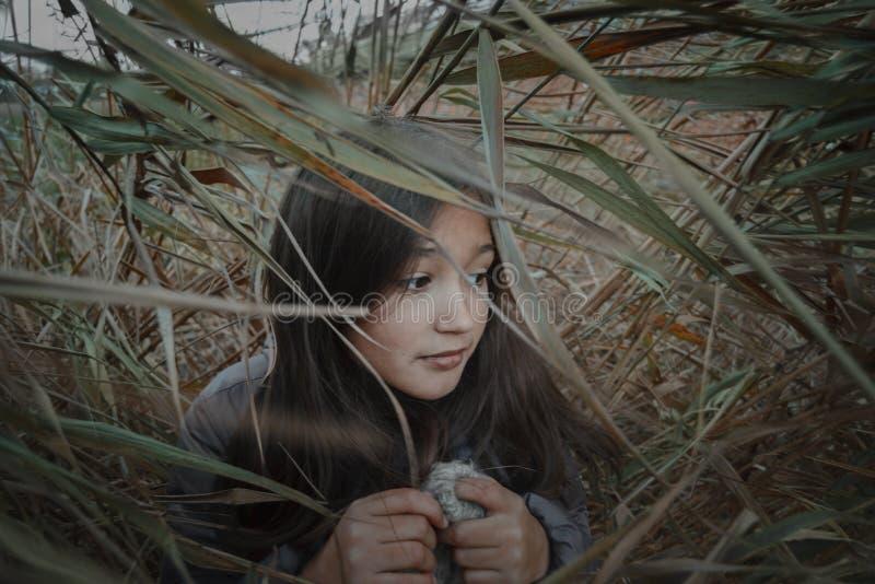 Πορτρέτο του όμορφου νέου εφηβικού κρυψίματος κοριτσιών brunette στους καλάμους στοκ εικόνα με δικαίωμα ελεύθερης χρήσης