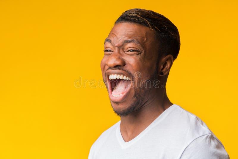 Πορτρέτο Του Afro Guy Που Γελάει Δυνατά Στο Στούντιο στοκ εικόνα με δικαίωμα ελεύθερης χρήσης