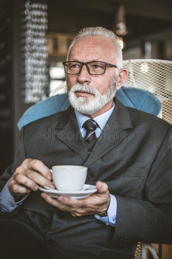 Πορτρέτο των ανώτερων επιχειρηματιών στο διάλειμμα στοκ φωτογραφία με δικαίωμα ελεύθερης χρήσης