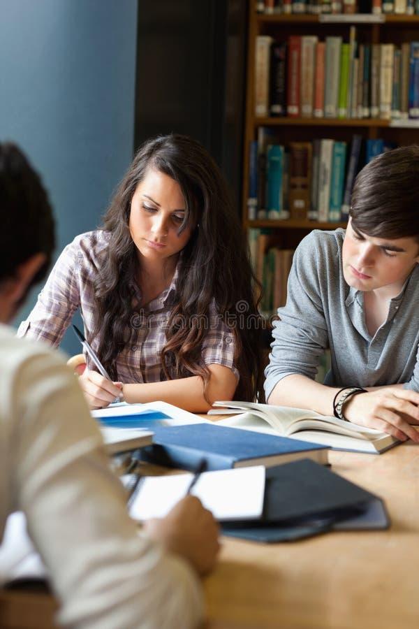 Πορτρέτο των σπουδαστών που αναθεωρούν σε μια βιβλιοθήκη στοκ εικόνα