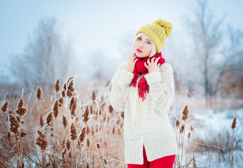 Πορτρέτο χειμερινών γυναικών στοκ φωτογραφίες με δικαίωμα ελεύθερης χρήσης