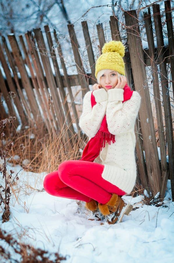 Πορτρέτο χειμερινών γυναικών στοκ εικόνες με δικαίωμα ελεύθερης χρήσης