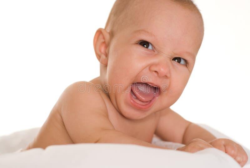 Πορτρέτο όμορφου ενός νεογέννητου στοκ φωτογραφίες με δικαίωμα ελεύθερης χρήσης