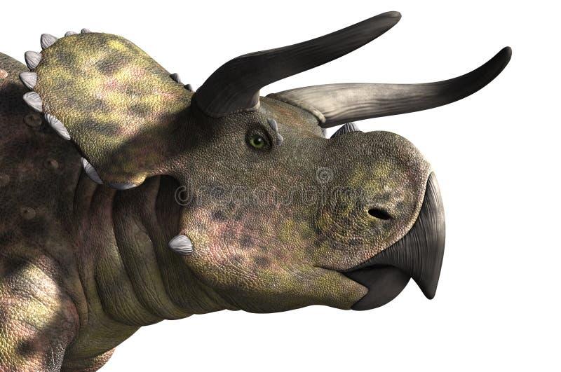 Πορτρέτο Nasutoceratops ελεύθερη απεικόνιση δικαιώματος