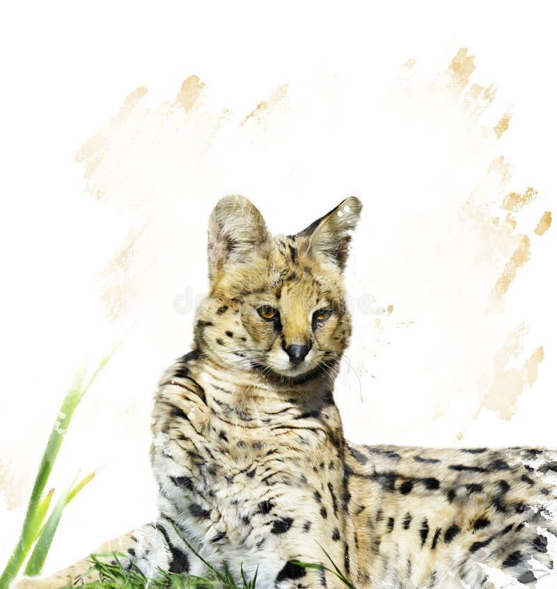 Πορτρέτο Serval διανυσματική απεικόνιση