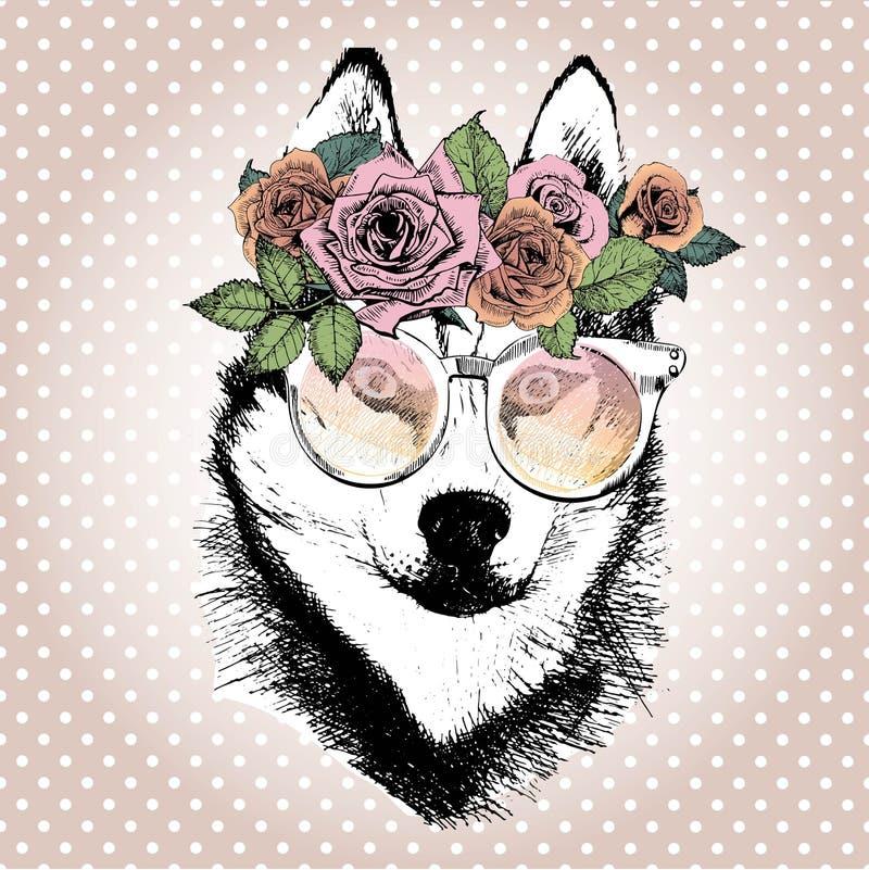 Πορτρέτο Vecotr του σκυλιού, που φορά το floral στεφάνι και τα γυαλιά ηλίου Σιβηρική γεροδεμένη φυλή διανυσματική απεικόνιση