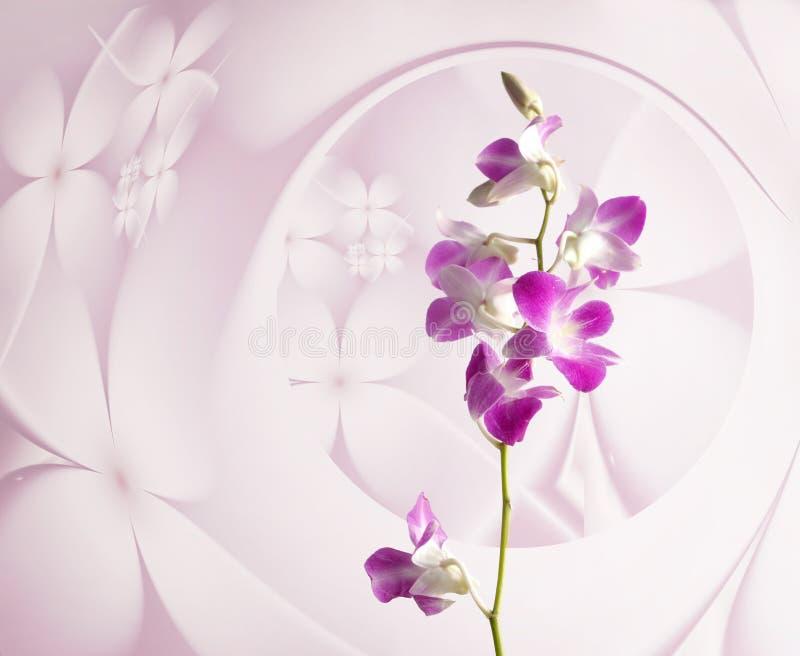 Πορφυρά λουλούδια ορχιδεών στο ρόδινο floral υπόβαθρο στοκ φωτογραφία