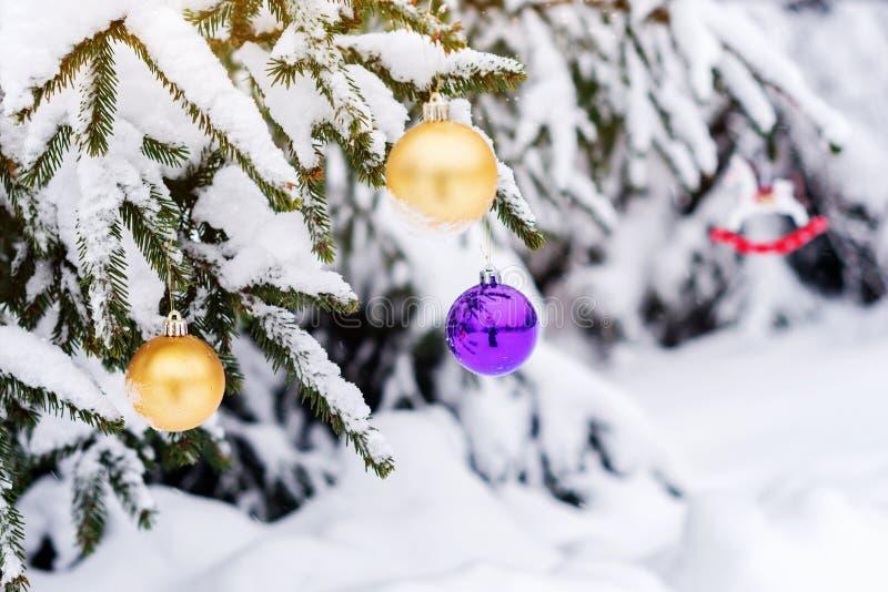 Πορφυρές και χρυσές σφαίρες Χριστουγέννων σε έναν χιονισμένο κλάδο έλατου Διακοσμήσεις χριστουγεννιάτικων δέντρων και Χριστουγένν στοκ εικόνες