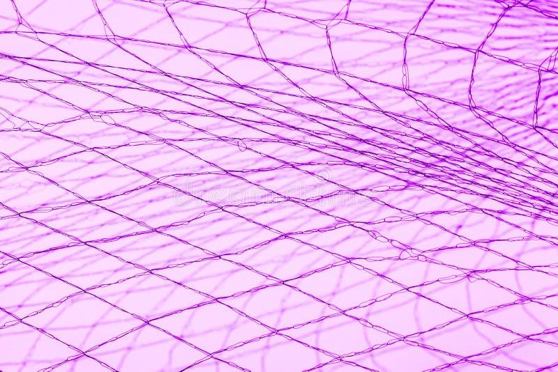 Πορφυρή αλιεία με δίχτυα στοκ εικόνες