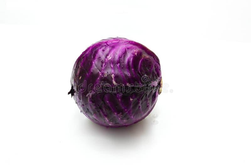 Πορφυρό λαχανικό κουνουπιδιών στοκ φωτογραφία με δικαίωμα ελεύθερης χρήσης