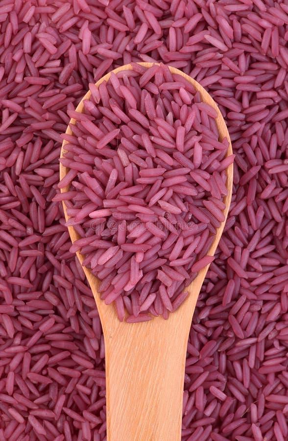 Πορφυρό ρύζι στο κουτάλι στοκ φωτογραφία με δικαίωμα ελεύθερης χρήσης