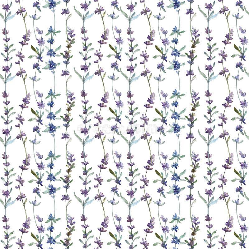 Πορφυρό lavender floral βοτανικό λουλούδι r r στοκ εικόνες