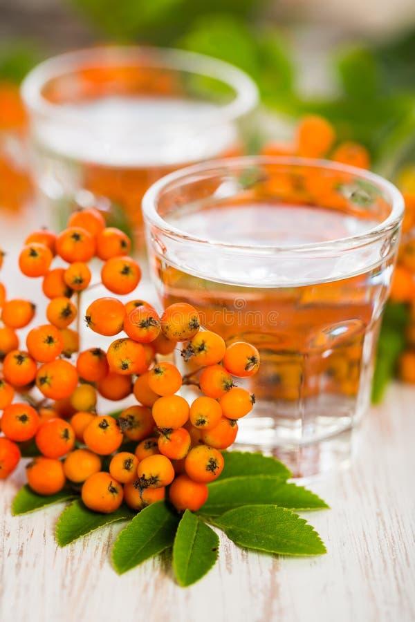 2 ποτήρια rowanberry του κονιάκ με rowanberries το aucuparia sorbus στην ξύλινη ταμπλέτα στοκ εικόνες