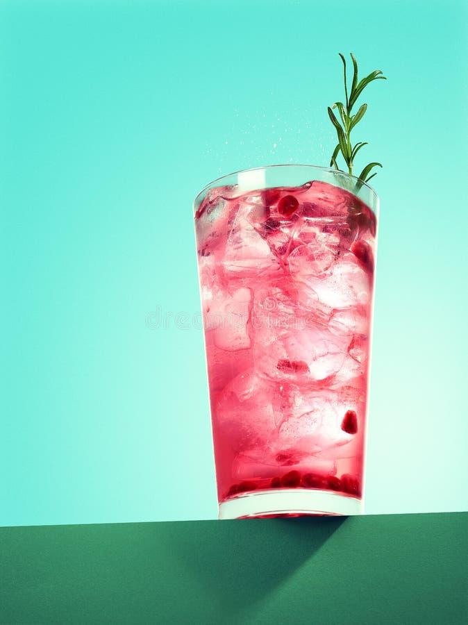 Ποτήρι του κοκτέιλ ροδιών spritzer με το δεντρολίβανο στοκ φωτογραφία