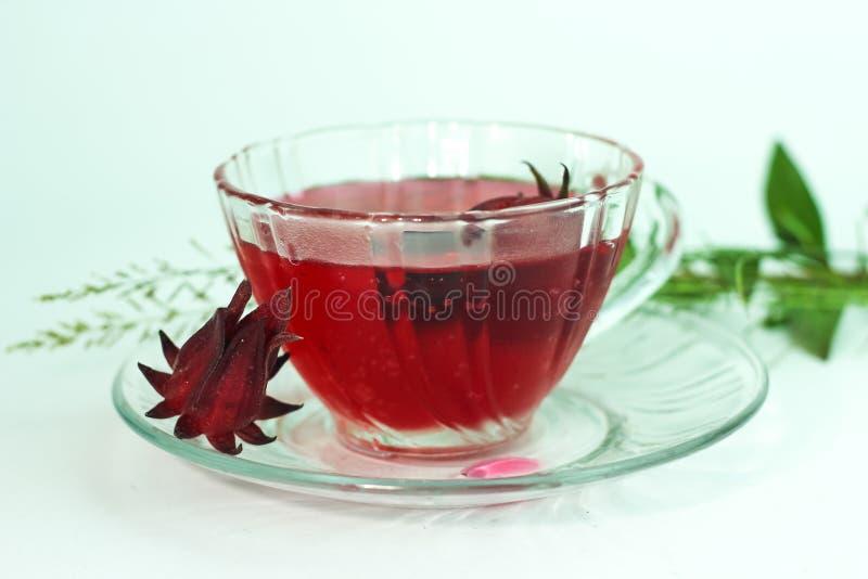 Ποτήρι του κρύου χυμού roselle - υγιή τρόφιμα ενάντια στο ξύλο στοκ φωτογραφίες