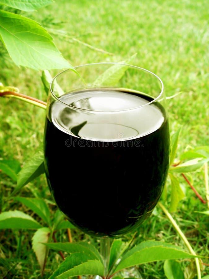 ποτήρι του κόκκινου κρασιού υπαίθρια - οινοποιία και ορισμένη wineyards έννοια στοκ εικόνες