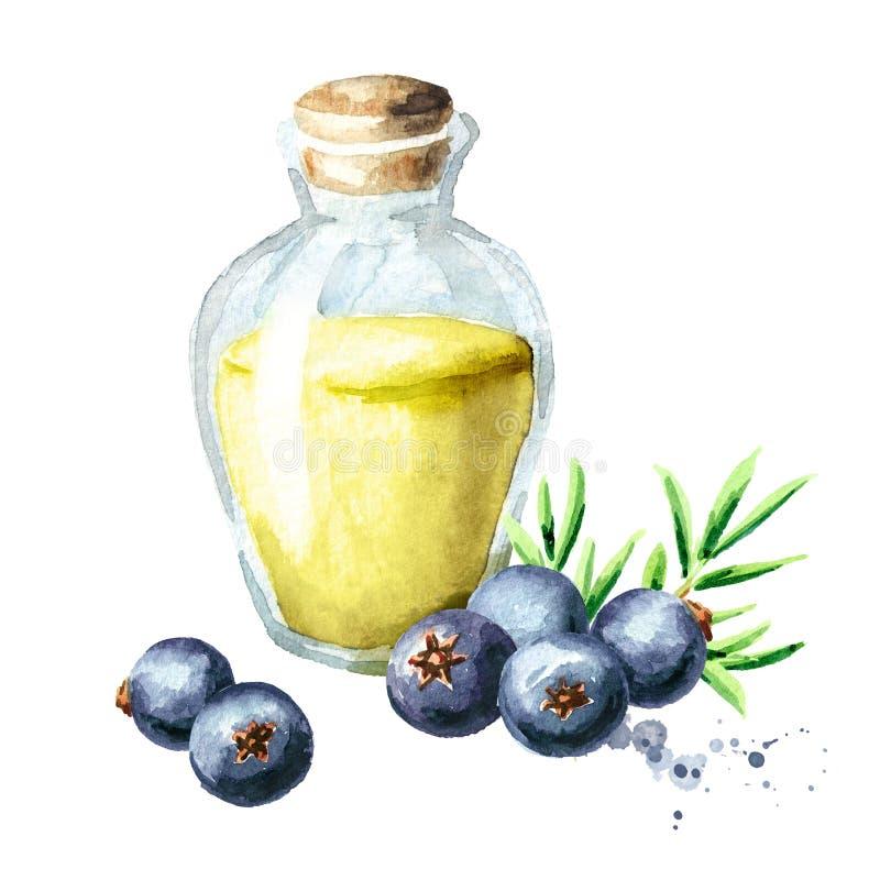 Ποτήρι του ουσιαστικού πετρελαίου ιουνιπέρων Συρμένη χέρι απεικόνιση Watercolor, που απομονώνεται στο άσπρο υπόβαθρο ελεύθερη απεικόνιση δικαιώματος