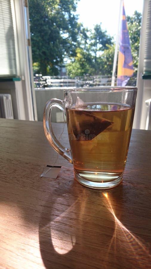 Ποτήρι του τσαγιού στοκ εικόνα