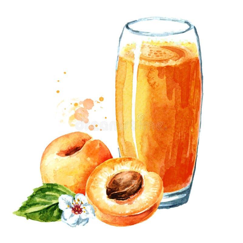 Ποτήρι του χυμού βερίκοκων Συρμένη χέρι απεικόνιση Watercolor, που απομονώνεται στο άσπρο υπόβαθρο στοκ φωτογραφία με δικαίωμα ελεύθερης χρήσης