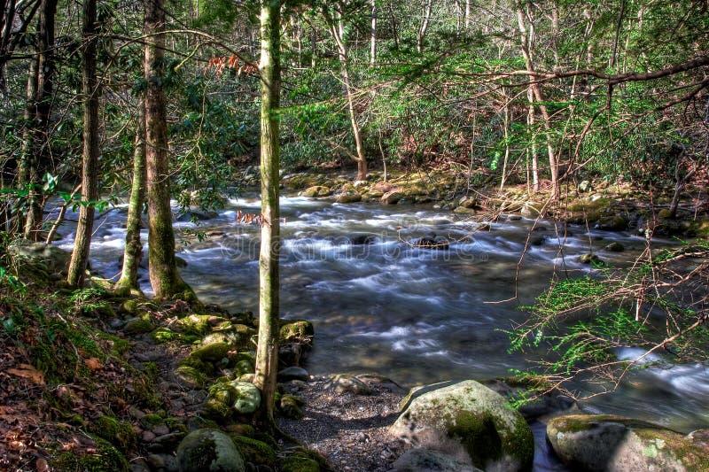 ποταμοί βουνών στοκ εικόνα