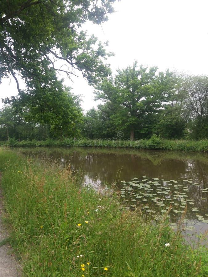 ποταμοί στοκ εικόνα με δικαίωμα ελεύθερης χρήσης