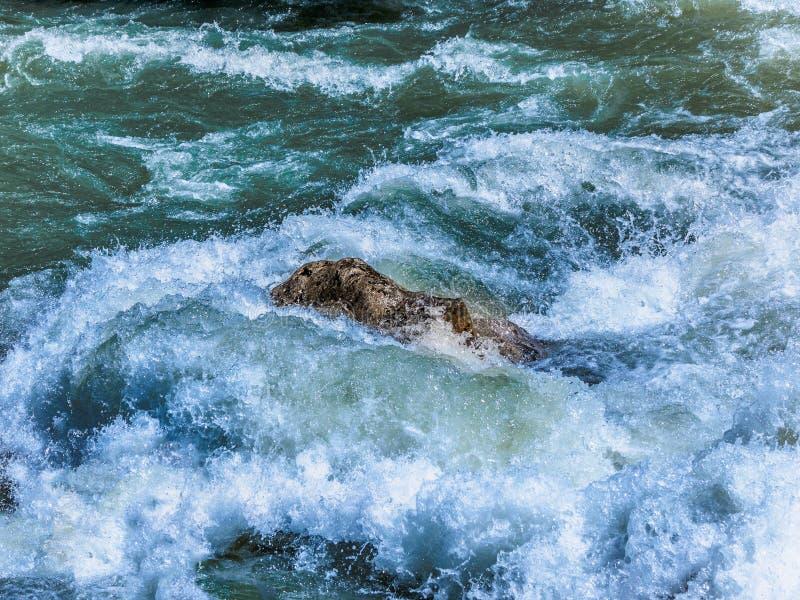 Ποταμός βουνών με τα άγρια ορμητικά σημεία ποταμού, σπασίματα νερού βίαια άνω του ρ στοκ φωτογραφίες με δικαίωμα ελεύθερης χρήσης