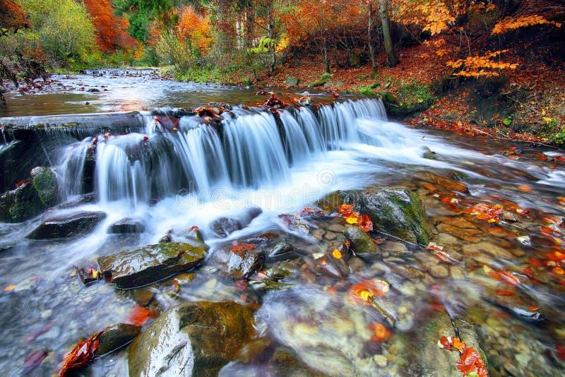 Ποταμός βουνών με τα ορμητικά σημεία ποταμού και τους καταρράκτες στο χρόνο φθινοπώρου στοκ φωτογραφίες με δικαίωμα ελεύθερης χρήσης
