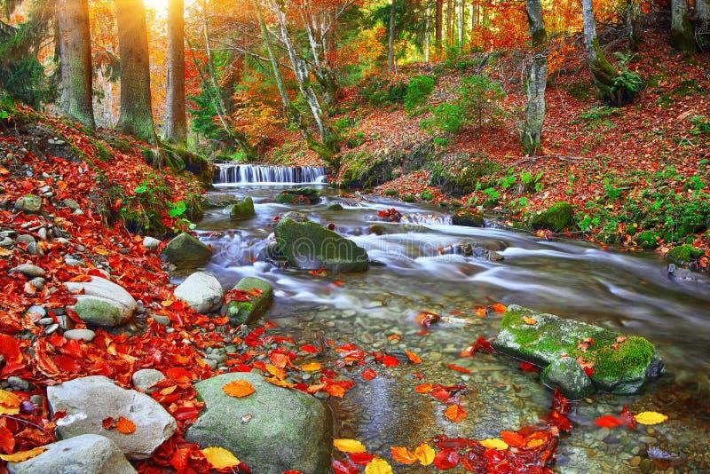 Ποταμός βουνών με τα ορμητικά σημεία ποταμού και τους καταρράκτες στο χρονικό χρόνο φθινοπώρου στοκ φωτογραφίες