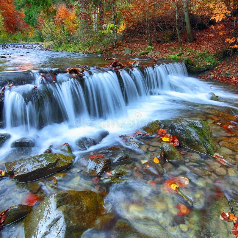 Ποταμός βουνών με τα ορμητικά σημεία ποταμού και τους καταρράκτες στο χρόνο φθινοπώρου στοκ φωτογραφία με δικαίωμα ελεύθερης χρήσης
