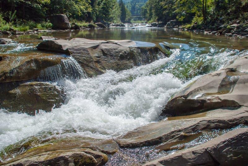 Ποταμός βουνών που διατρέχει του πράσινου δάσους στοκ εικόνες με δικαίωμα ελεύθερης χρήσης