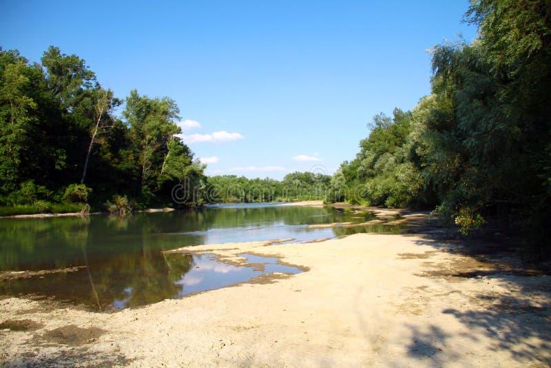 Ποταμός βουνών που διατρέχει του πράσινου δάσους στοκ φωτογραφίες με δικαίωμα ελεύθερης χρήσης