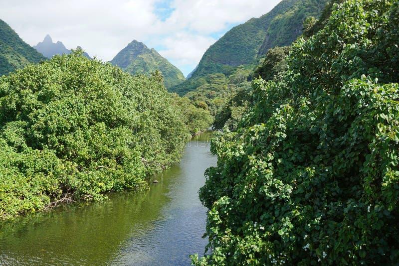 Ποταμός γαλλική Πολυνησία βουνών τοπίων της Ταϊτή στοκ εικόνες